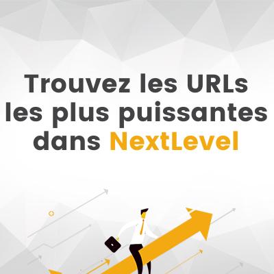 Netlinking efficace sur NextLevel